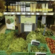Biomarkt-Greger-Kassel-08
